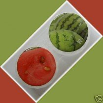 Watermelon Summer Fruits Contact Lens Holder For Lenses