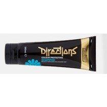 La Riche Directions Colour Protecting Shampoo